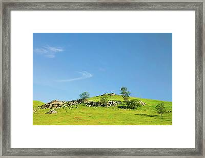 Framed Print featuring the photograph Light And Shadows - Spring In Central California by Ram Vasudev