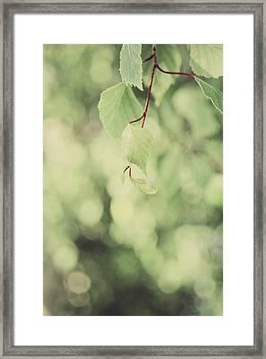 Light As The Air Framed Print