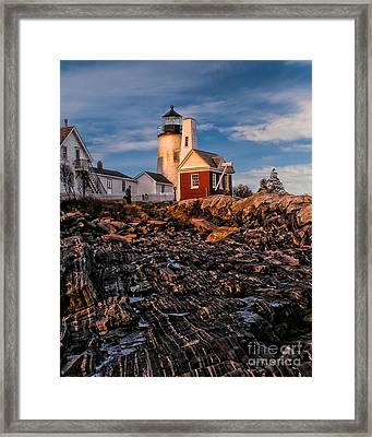 Light At Pemaquid Point Framed Print by Nick Zelinsky