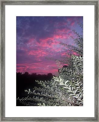 Light Before The Dark Framed Print by Warren Thompson