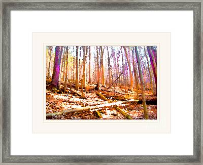 Framed Print featuring the photograph Light Between The Trees by Felipe Adan Lerma