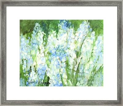 Light Blue Grape Hyacinth. Framed Print