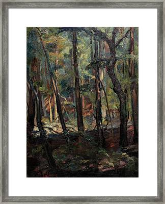 Light Dancing With Trees Framed Print by Maris Salmins