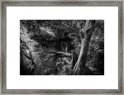 Light Flow Framed Print by Marvin Spates