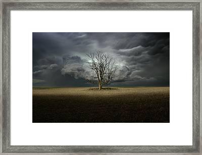 Light From The Heavens Framed Print