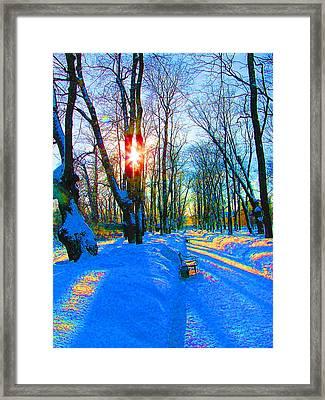 Light In Garden Framed Print by Yury Bashkin