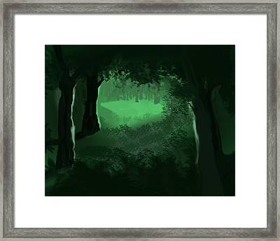 Light In The Forest Framed Print