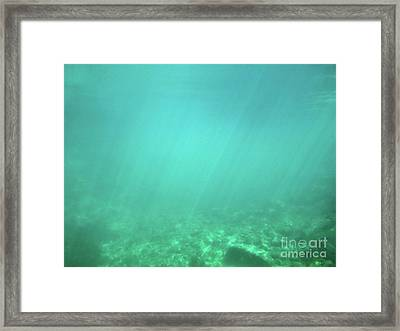 Framed Print featuring the photograph Light In The Water by Francesca Mackenney