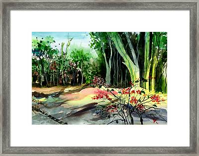 Light In The Woods Framed Print by Anil Nene