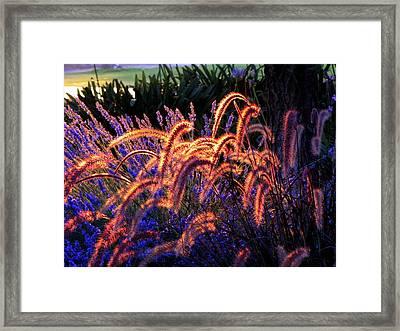 Light Is Good Framed Print by DEBRON Art