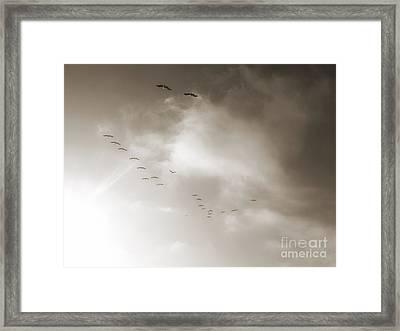 Light Just Ahead  Framed Print