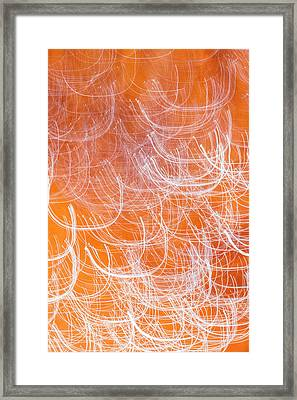 Framed Print featuring the photograph Light Loops by Deborah Hughes