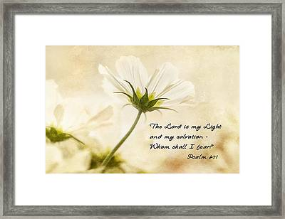 Light Framed Print by Mary Jo Allen