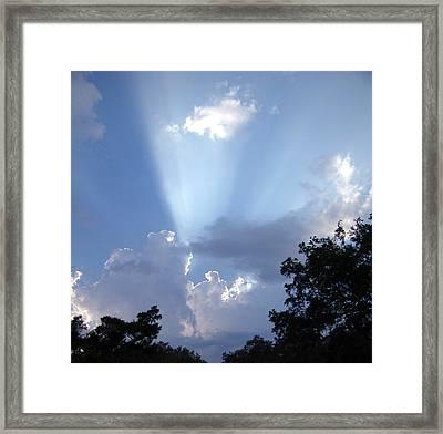 Light Of Day Framed Print by Nicole I Hamilton