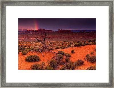 Light Of The Desert Framed Print by John De Bord
