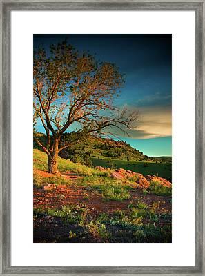 Framed Print featuring the photograph Light Of The Hillside by John De Bord
