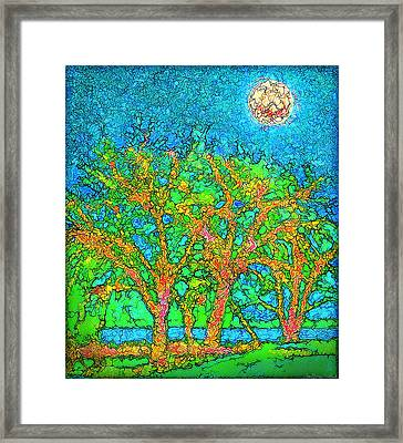 Framed Print featuring the digital art Light Of The Radiant Sun - Trees In Boulder County Colorado by Joel Bruce Wallach