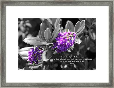 Light Of The World Framed Print by Kate Farrant