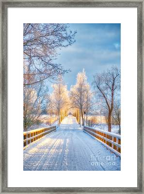 Light Of Winter Framed Print