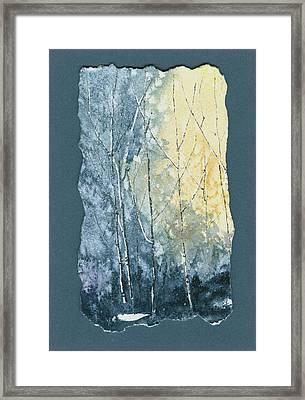 Light On Bare Trees 1 Framed Print