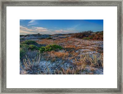 Light On The Dunes Framed Print by Bill Roberts