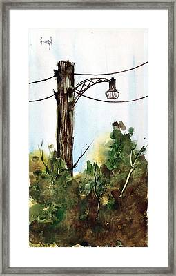 Light Pole Framed Print