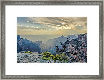 Light Seeks The Depths Of Grand Canyon Framed Print