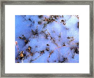 Light Snow In The Woods Framed Print by Dave Martsolf