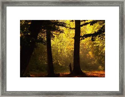 Light Framed Print by Svetlana Peric
