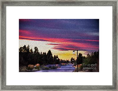 Light To My Path Framed Print by MaryJane Armstrong
