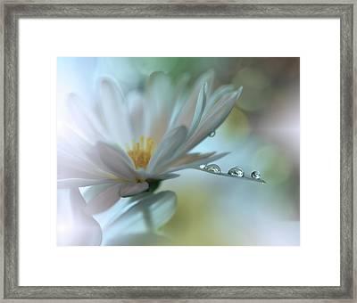 ..light Touch... Framed Print by Juliana Nan