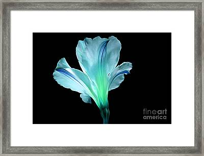 Light Up Your Soul Framed Print
