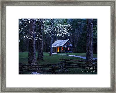 Light Within Framed Print by Anthony Heflin