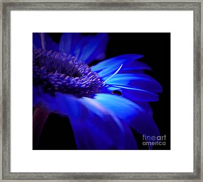 Light Within Me Framed Print by Krissy Katsimbras