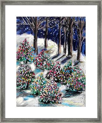 Lighted Path Framed Print by John Williams