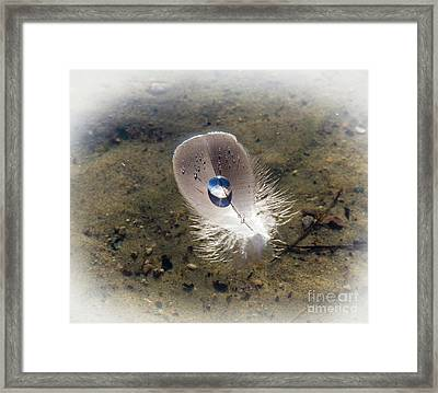 Framed Print featuring the photograph Lighten Up by Michelle Wiarda