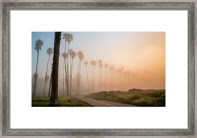 Lighter Longer Framed Print by Sean Foster