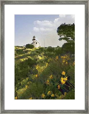 Lighthouse Daisies Framed Print by Sharon Foster