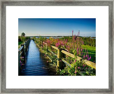 Framed Print featuring the photograph Lighthouse Path by Mark Miller