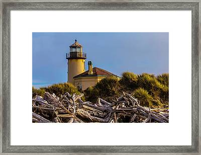 Lighthouse With Driftwood Framed Print by Garry Gay