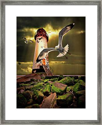 Lighthouse With Seagulls Framed Print by Meirion Matthias