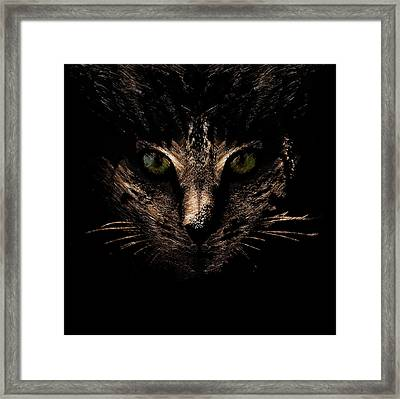 Framed Print featuring the photograph Lighting by Helga Novelli