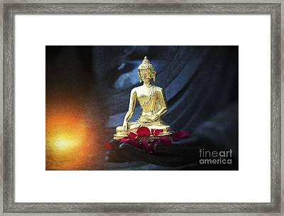 Lighting The Lamp Within Framed Print by Tim Gainey