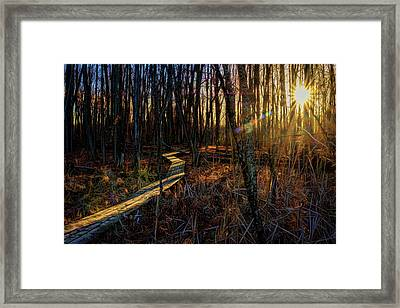 Lighting The Way Framed Print