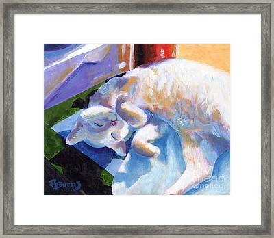 Lightly Napping Framed Print by Pat Burns