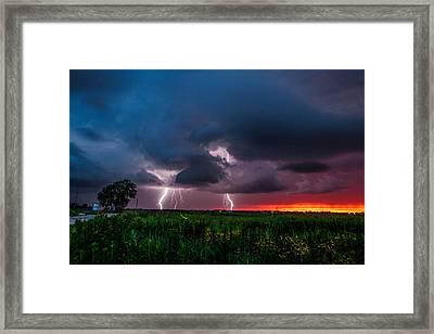 Lightning Bugs Framed Print by Sean Ramsey