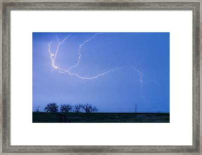 Lightning Crawler Framed Print