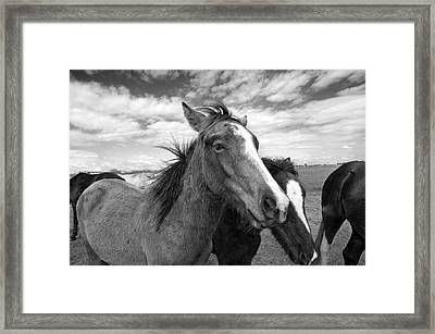 Lightning Framed Print by Jimmy Bruch