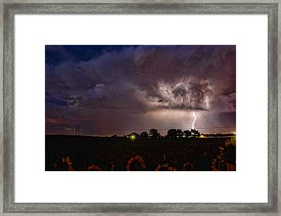 Lightning Stormy Weather Of Sunflowers Framed Print