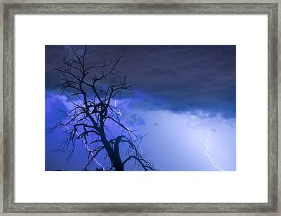 Lightning Tree Silhouette 38 Framed Print